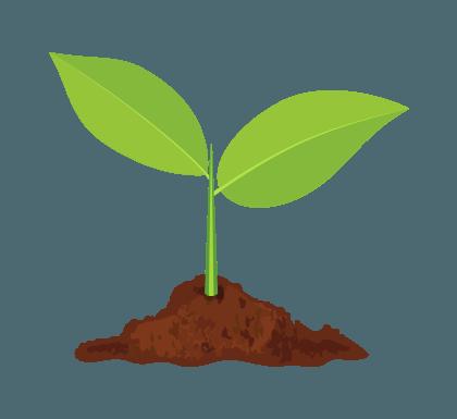 sprout slider
